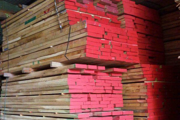 gỗ Dẻ gai (gỗ Beech) nhập khẩu