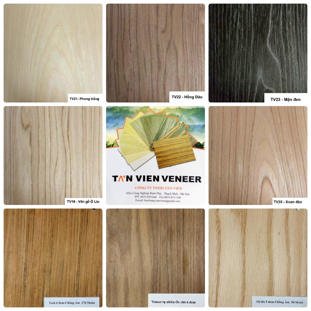 Bảng màu gỗ Veneer