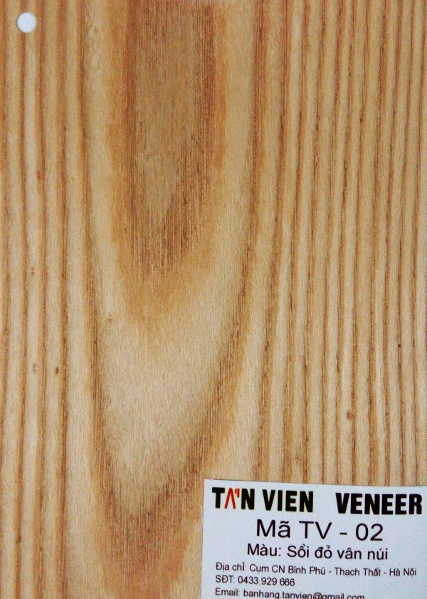 Veneer kỹ thuật TV-02