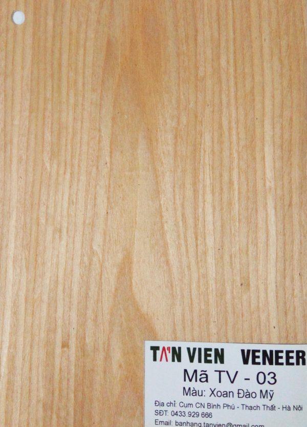 Veneer kỹ thuật TV-03
