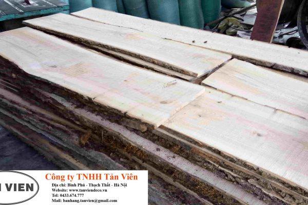 gỗ tần bì xẻ sấy